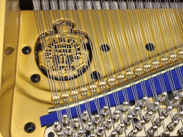 VENDIDO Blüthner modelo 6.  Aniversario Blüthner 190cm Edicion limitada y especial.